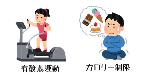 有酸素運動とカロリー制限の画像